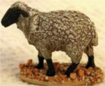 The Nativity: Sheep