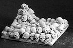 40mm Square Skull Bases (2) (Discontinued)