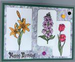 Birthday, Flower Portrait Trio