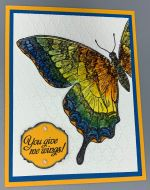 Encouragement, Butterfly Wings