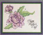Mom, Lavender Peonies