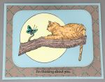 Thinking of You, Cat on a Limb